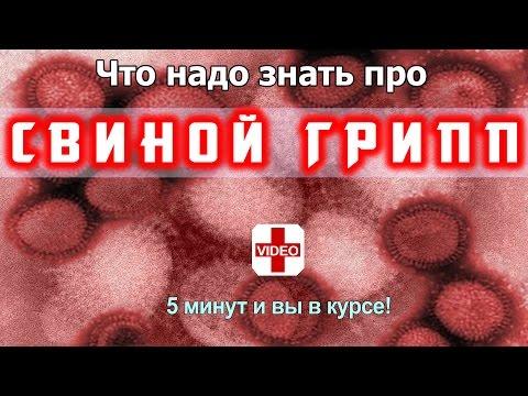 СВИНОЙ ГРИПП - ОПАСНЫЙ ВИРУС | Симптомы и Как Не Заболеть, если эпидемия