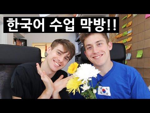 OLLIE'S FINAL KOREAN LESSON