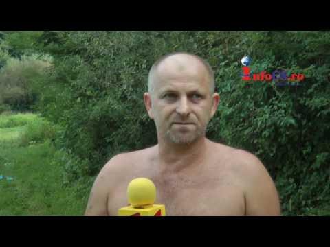 Culturile satenilor din Jitin distruse de mistreti