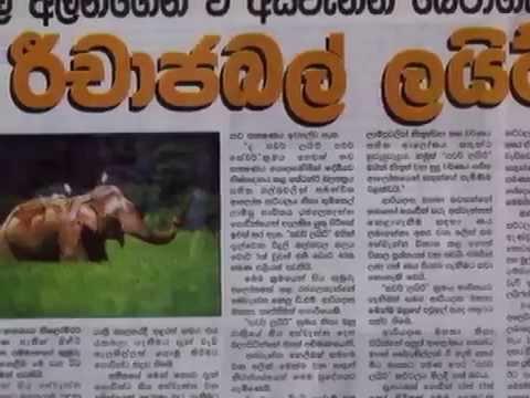 Global Lifestyle Lanka Pvt Ltd - power full company in Sri ...