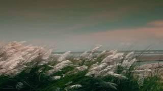 Download Video বাংলা নতুন সালের নতুন গান যতনে রেখেছি তোমায় আমার এই বুকে by ইমরান খান MP3 3GP MP4