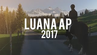 Luana Abschlussprojekt 2017