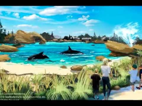 SeaWorld_Beautiful place to visit_in USA