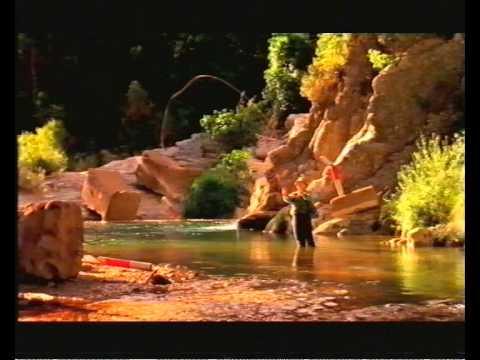 Фото к видео: Hyundai Accent ad 1999