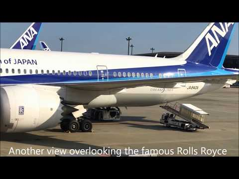 All Nippon Airlines 787-8 Dreamliner Business Class w/ Lounge Narita to Manila Flt 819