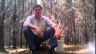 Сбор грибов и ягод, рыбалка и охота в Австралии. Рамзес-809(