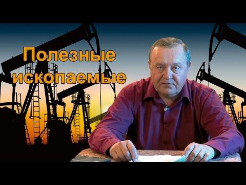 Какими полезными ископаемыми богата центральная Россия?