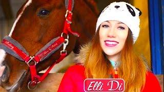 МОЯ ПЕРВАЯ ЛОШАДЬ - ЗНАКОМЬТЕСЬ, ГРАФ - СОДЕРЖАНИЕ ЛОШАДИ | Elli Di Pets