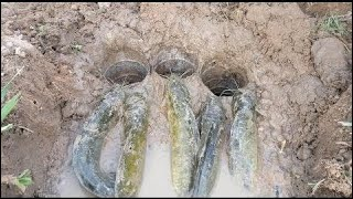 Легкая 3 Бутылка Глубокого Отверстия Рыбалка Ловушка - Умная Девушка Ловить Рыбу, Используя Бутылку