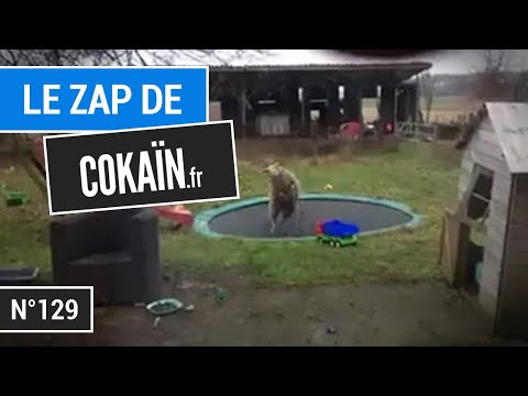 Le Zap De Cokaïn.fr N°129