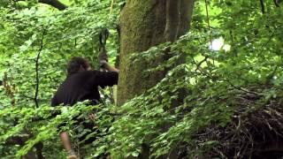 La Belgique sauvage - Documentaire ARTE