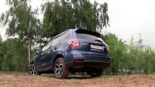 Subaru Forester 2013   Обзор тест драйв от ATDrive ru