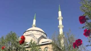 fatiha ihlas felak nas kadr ayetel kursi amenerrasul