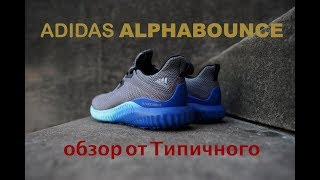 видео Кроссовки для бега Adidas