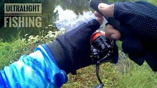 Mancing ikan gabus dekat rumah ( Casting UL )