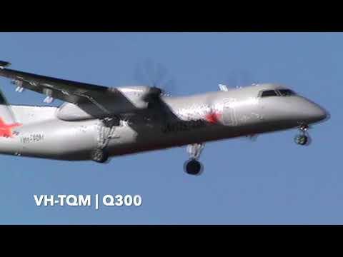 De Havilland Canada Dash 8  / Bombardier Q300 | AKL Arrivals | Air New Zealand & Jetstar