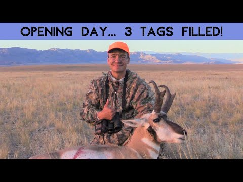 WOW!  ALL 3 TAGS FILLED OPENING DAY!  WY, DIY, 2018 Pronghorn Hunt