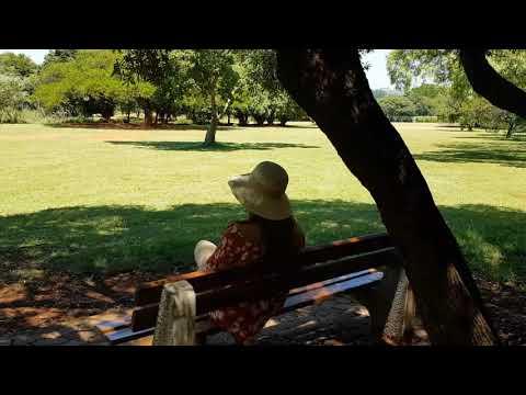 Exploring The Pretoria Botanical Gardens✔