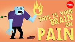 hqdefault - Endorphins For Back Pain