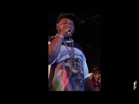 George Clinton - Funky Kind (Gonna Knock It Down)