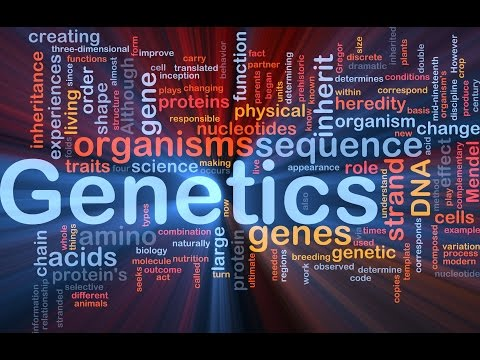 Genetics : Lecture 3 / DNA Structure&Function