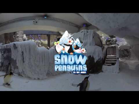 360º Video Ski Dubai Snow Park Experience