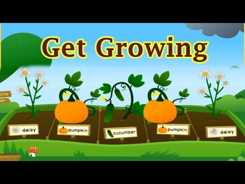 Growing Plants & Vegetables Funny Video For Children, Planti