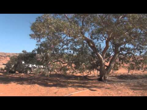 Simpson Desert Crossing