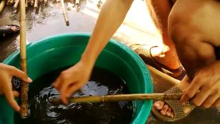 Cách xử lý rửa trúc làm sáo || Xưởng sáo Cao Trí Minh