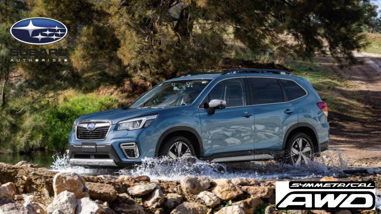 Subaru Forester Off Road >> NEW 2019 Subaru Forester - Off-road test drive,Interior