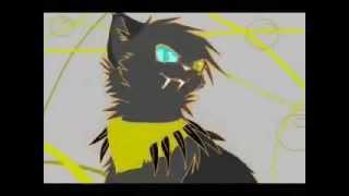 коты - воители: Змеехвостая - безумие