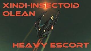 Star Trek Online: Xindi-Insectoid Olean Heavy Escort