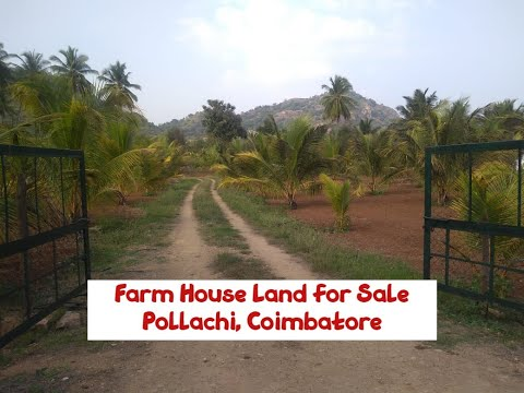 Farm House Land For Sale At Pollachi, Coimbatore | World New Property