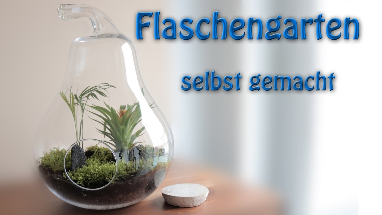 flaschengarten ewiger garten ewiges terrarium selber machen youtube. Black Bedroom Furniture Sets. Home Design Ideas