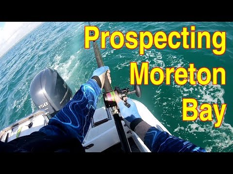 Prospecting Moreton Bay