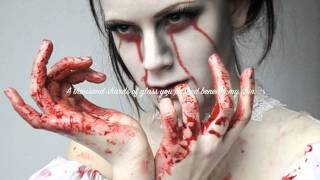 Apocalyptica ft. Lacey Sturm~ Broken Pieces (lyrics)