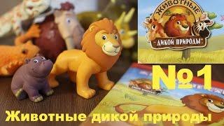 Животные дикой природы №1, журнал ДеАгостини