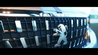 Nouvelle concession Peugeot Arles : Les Grands Garages de Camargue !