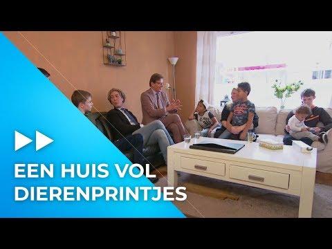 Frank en Rogier nemen 'DIERENPRINT' wel HEEL serieus | Paleis voor een Prikkie