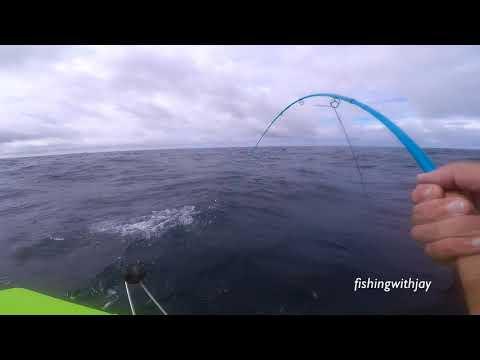 Sept 14 - 2018 - Oregon Albacore Fly Fishing