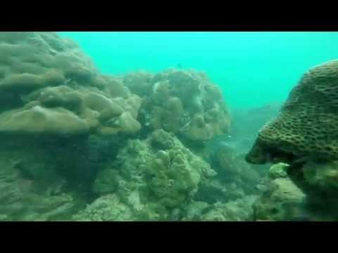 Coral Island Phuket Thailand 18 July 2015