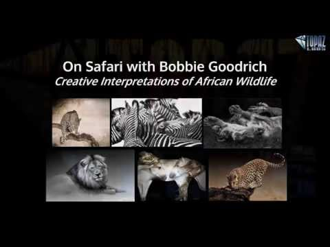 On Safari with Bobbie Goodrich: Creative Interpretation of African Wildlife