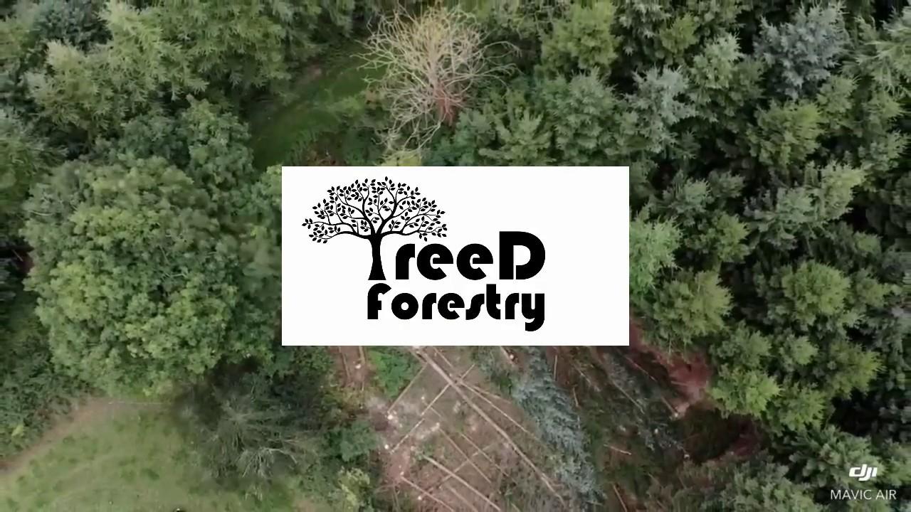 72e9cd0757eaef BSc in Forestry