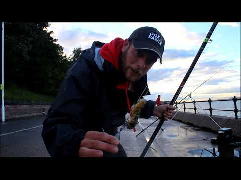 Smooth Hound Fishing With James Davies Cooke Part 2