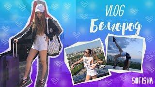 VLOG | Белгород