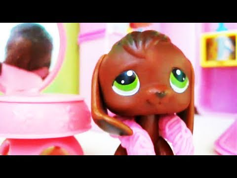 Littlest Pet Shop: Popular Episode #4: New Girl In Town