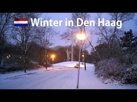 Winter in The Hague 2009