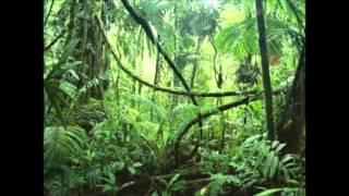Aathmavil Muttivilichathu Pole-Malayalam Hit Song