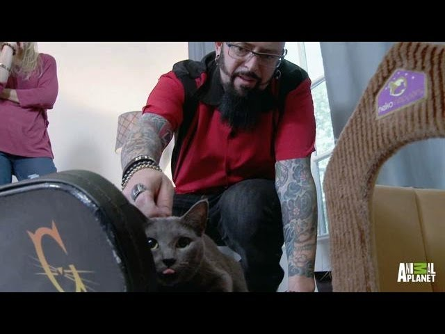 Giver's Parents Learn to Speak His Language | My Cat From Hell