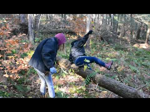 Invasive Species Clean-Up. Section 01, Group 12, November 12th, 2016